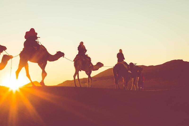 Sortie dans le desert